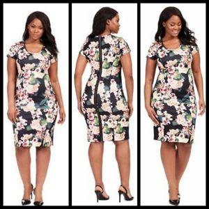 Adrianna Papell floral, scuba knit, zip back dress